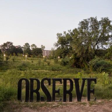 Observe-BBPark